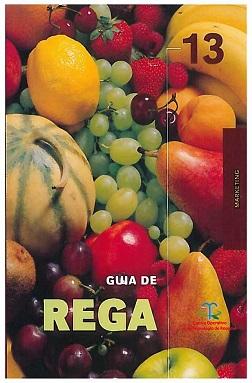 Guia13